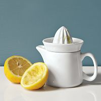 mini hand juicer west elm