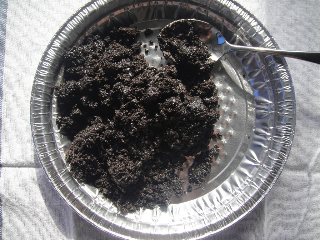 crumbs in pie dish
