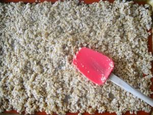 Quinoa on tray
